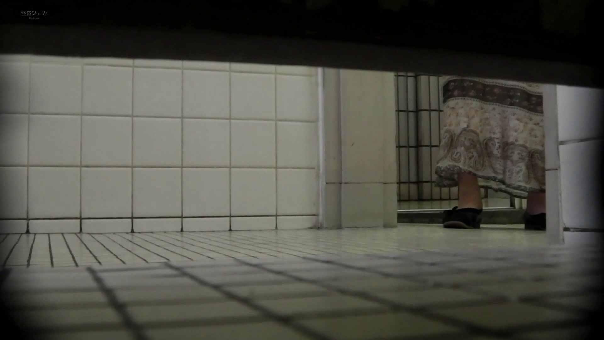 巨乳 乳首:洗面所特攻隊 vol.61必見!オールフロント特集:怪盗ジョーカー
