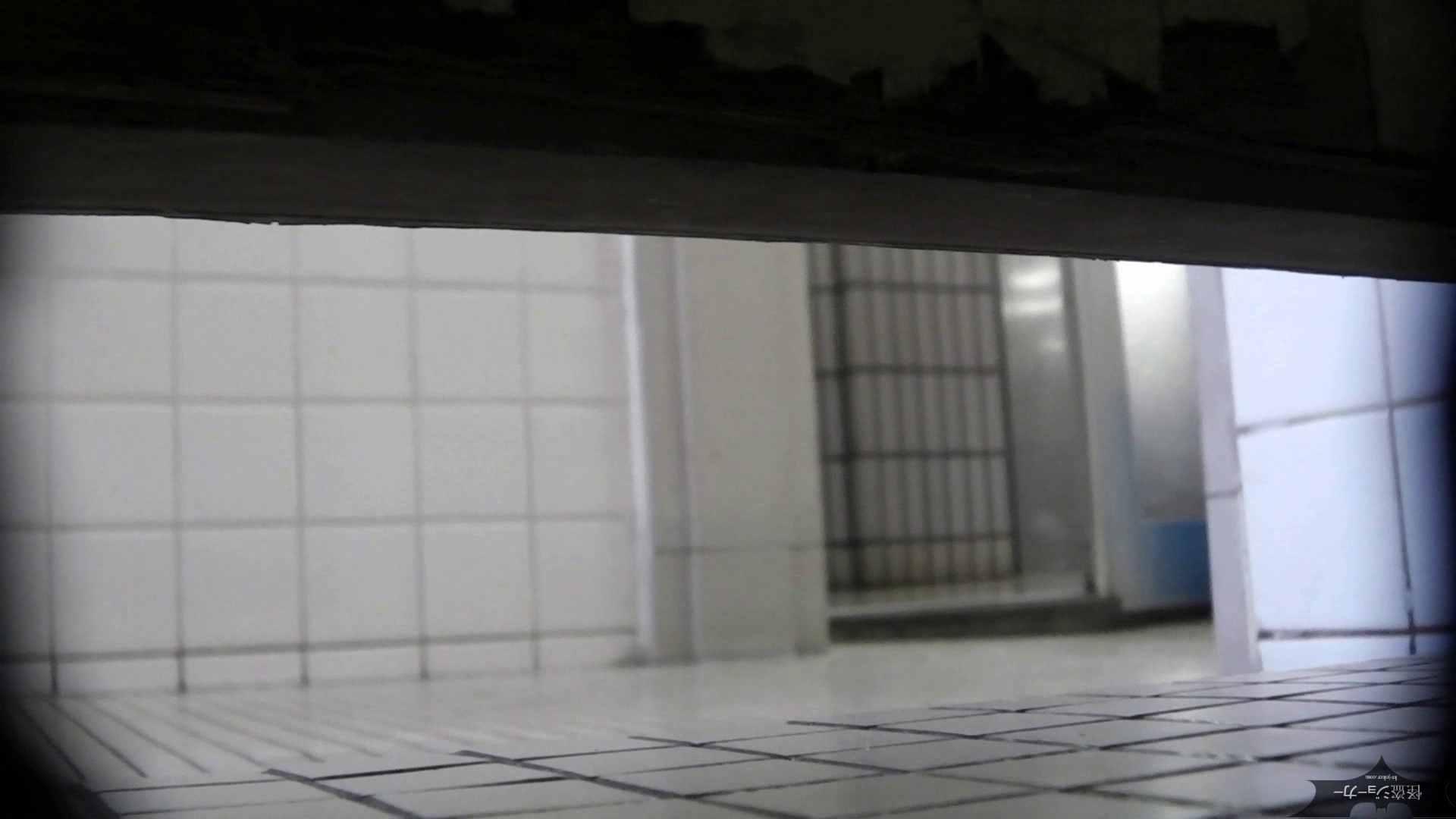 【美しき個室な世界】洗面所特攻隊 vol.051 洗面所  49pic 22