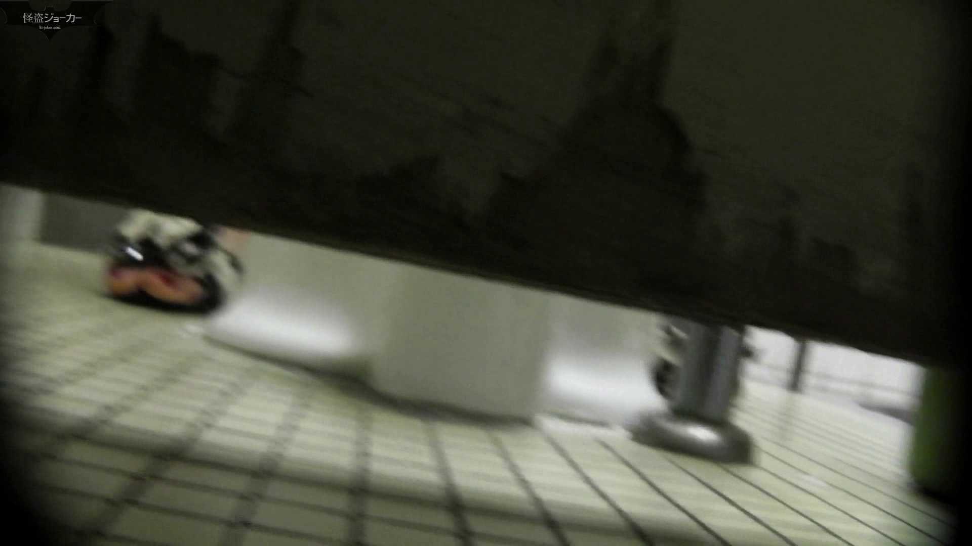 【美しき個室な世界】洗面所特攻隊 vol.051 洗面所  49pic 34