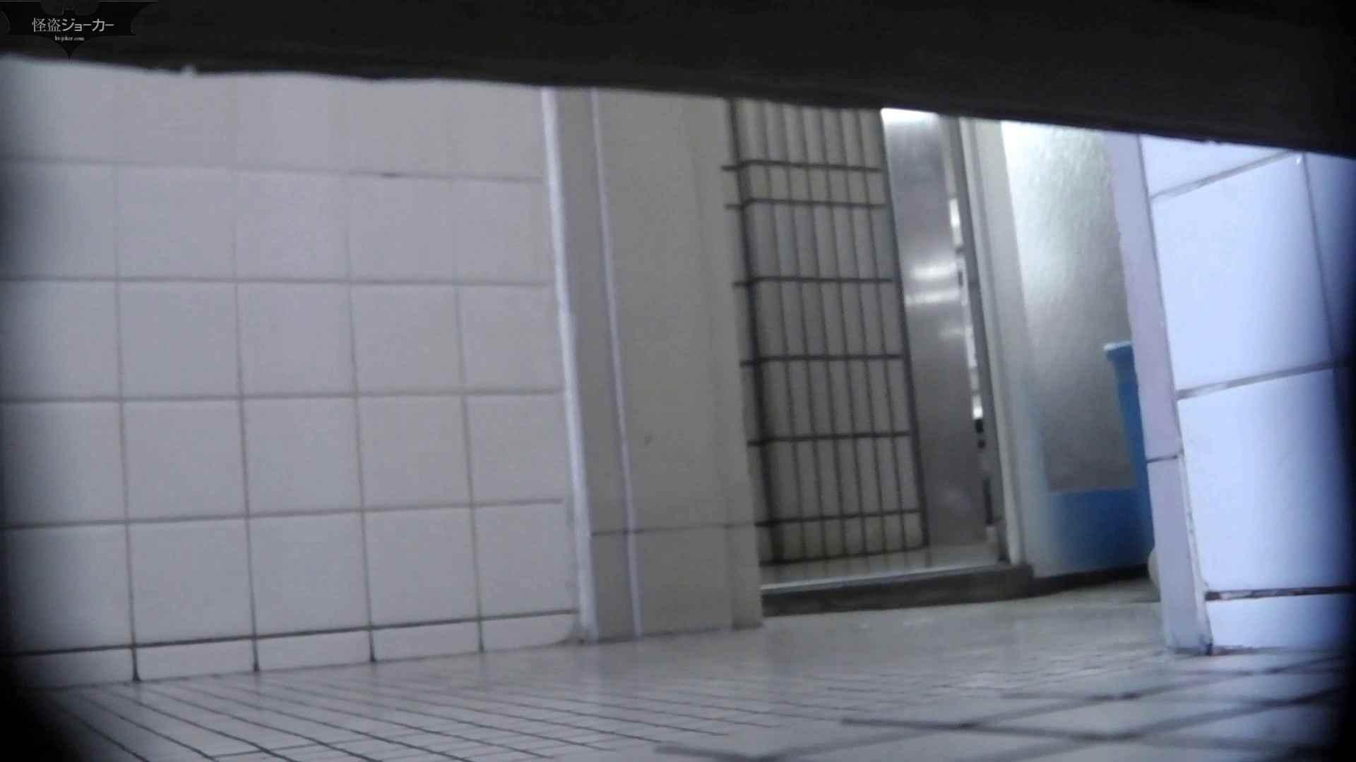 【美しき個室な世界】洗面所特攻隊 vol.051 洗面所  49pic 40