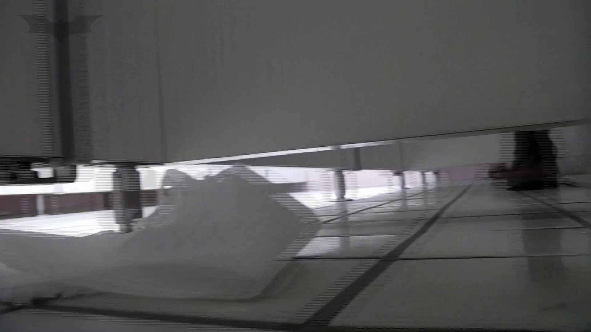 美しい日本の未来 No.36 進歩3連続作戦【2015・28位】 盗撮  66pic 30