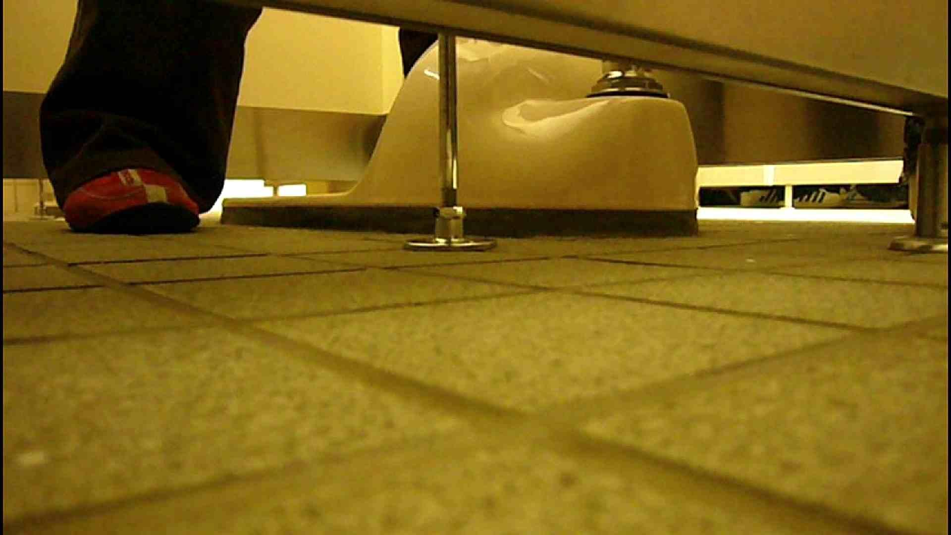 洗面所固定カメラ撮影 オムニバスNol.2 OLの実態  94pic 24