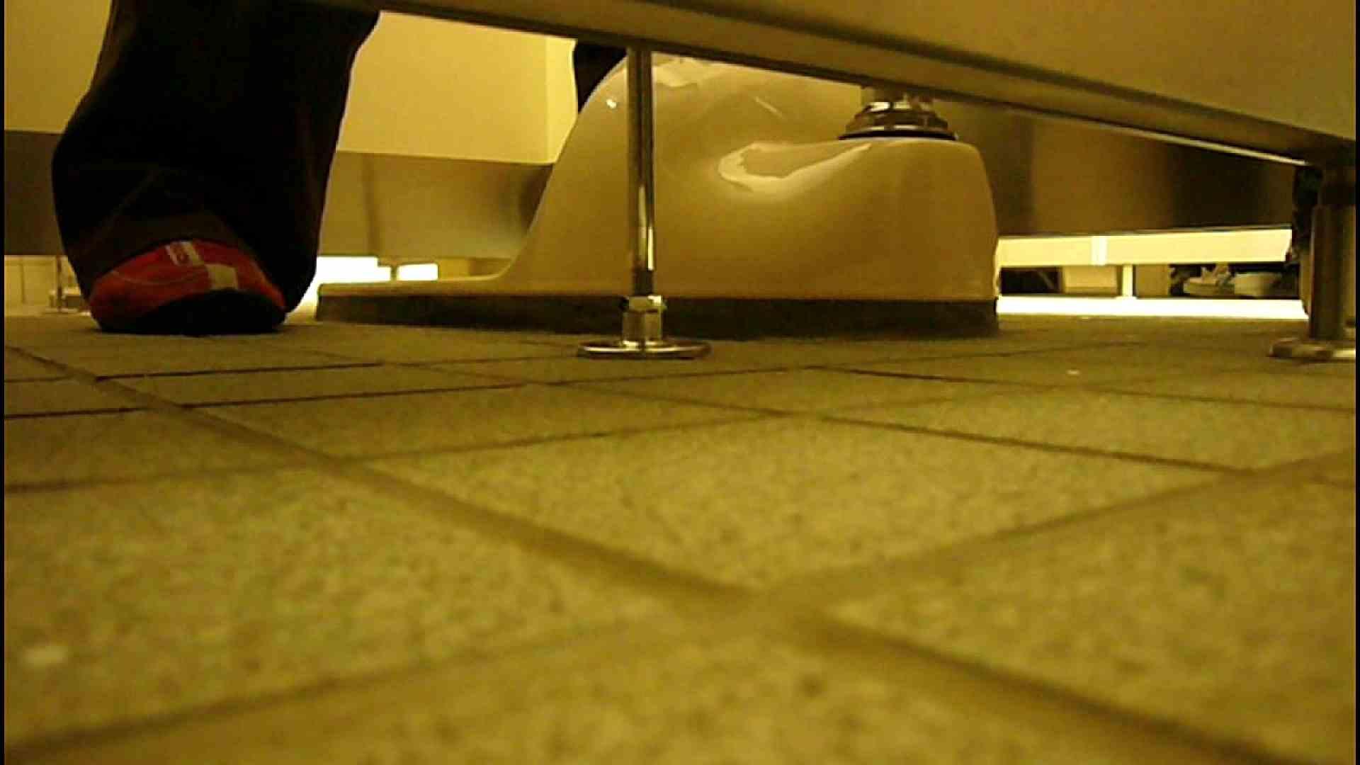 洗面所固定カメラ撮影 オムニバスNol.2 OLの実態  94pic 28