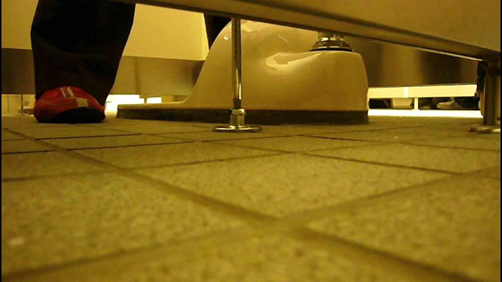 洗面所固定カメラ撮影 オムニバスNol.2 OLの実態  94pic 36