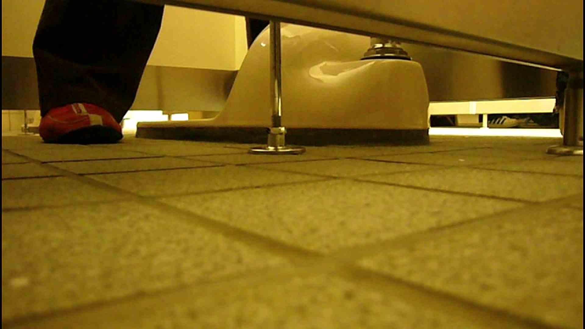 洗面所固定カメラ撮影 オムニバスNol.2 OLの実態  94pic 38