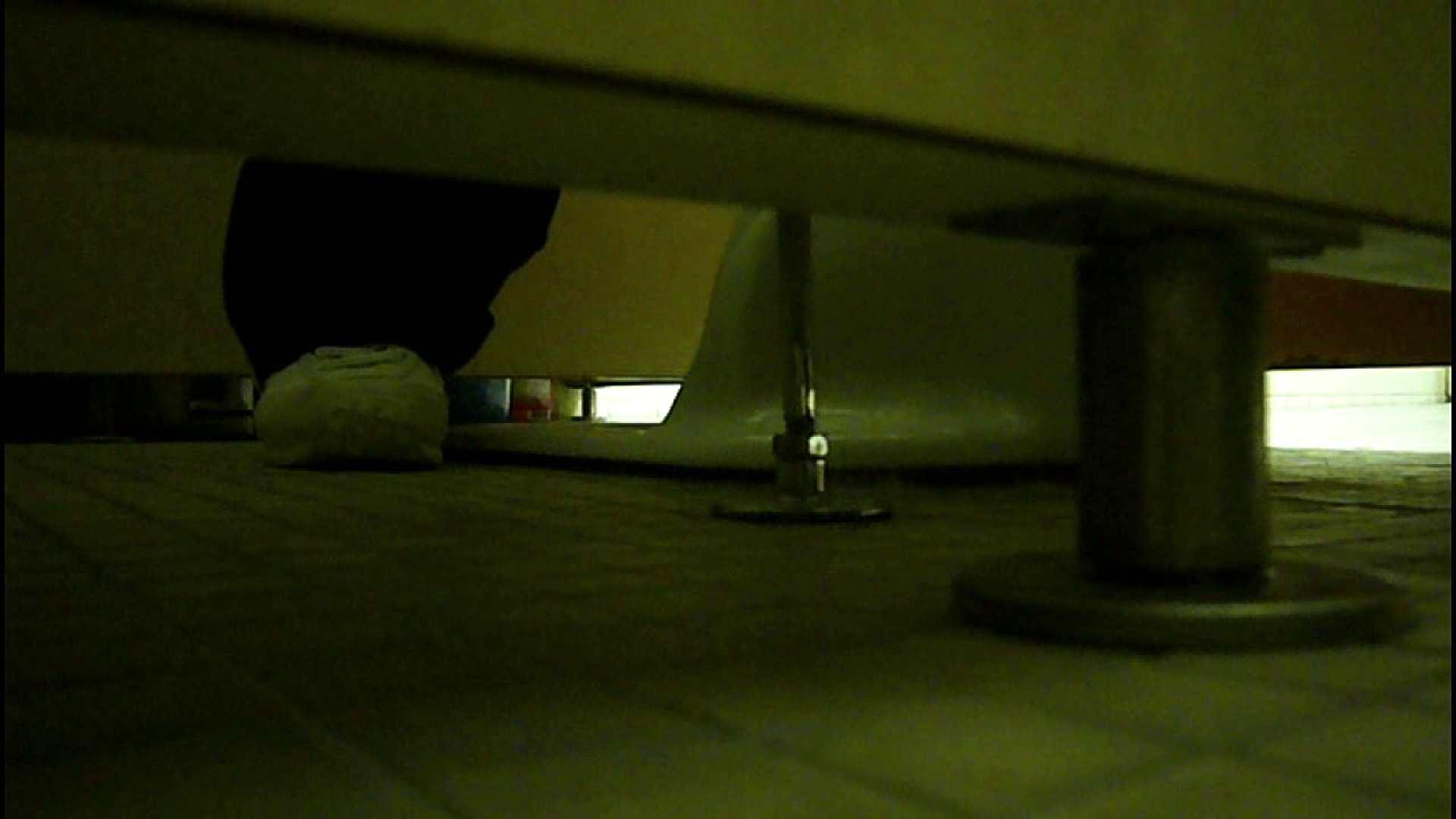 洗面所固定カメラ撮影 オムニバスNol.2 OLの実態  94pic 44