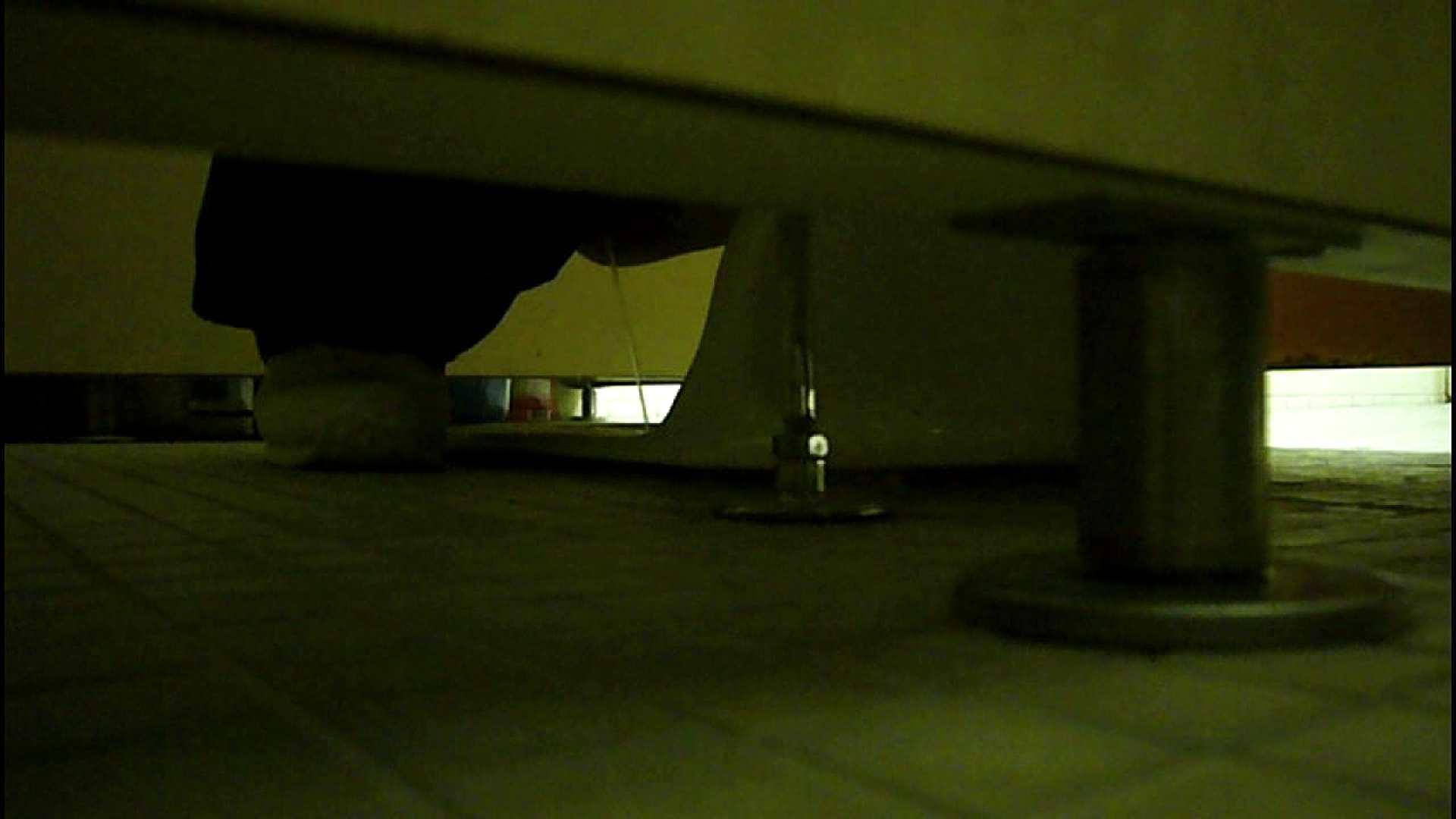 洗面所固定カメラ撮影 オムニバスNol.2 OLの実態 | 洗面所  94pic 45