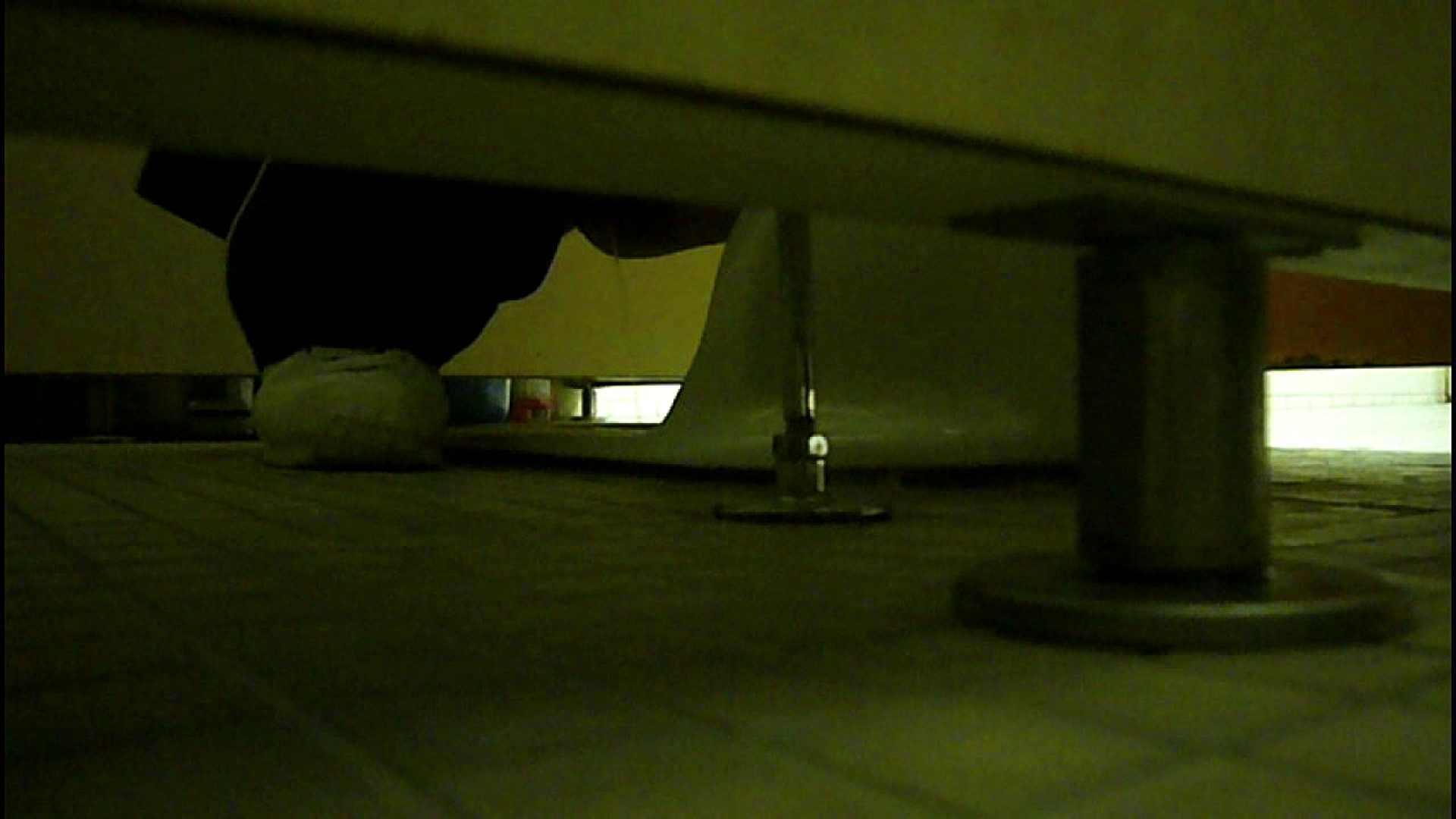 洗面所固定カメラ撮影 オムニバスNol.2 OLの実態  94pic 46