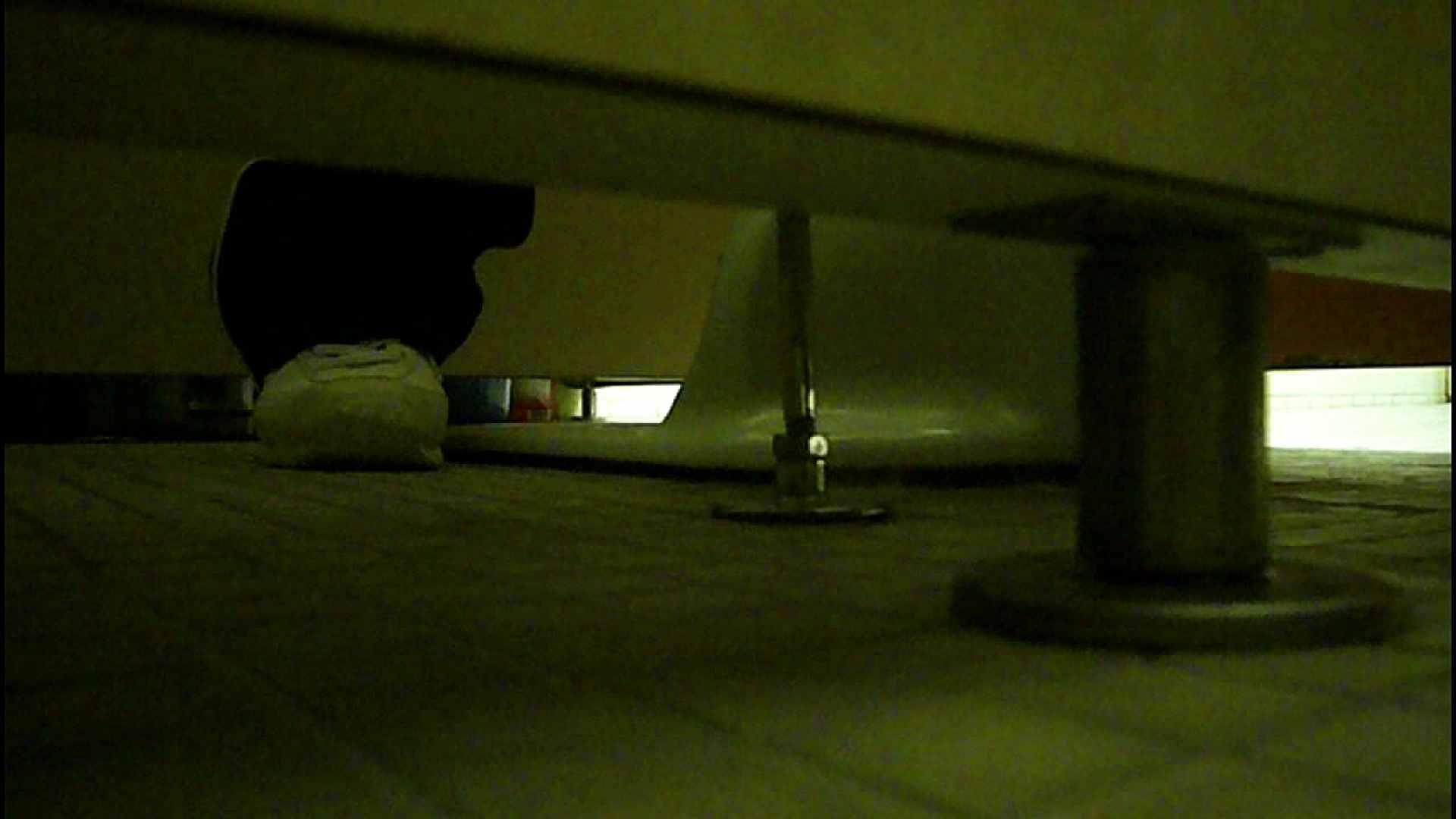 洗面所固定カメラ撮影 オムニバスNol.2 OLの実態  94pic 48