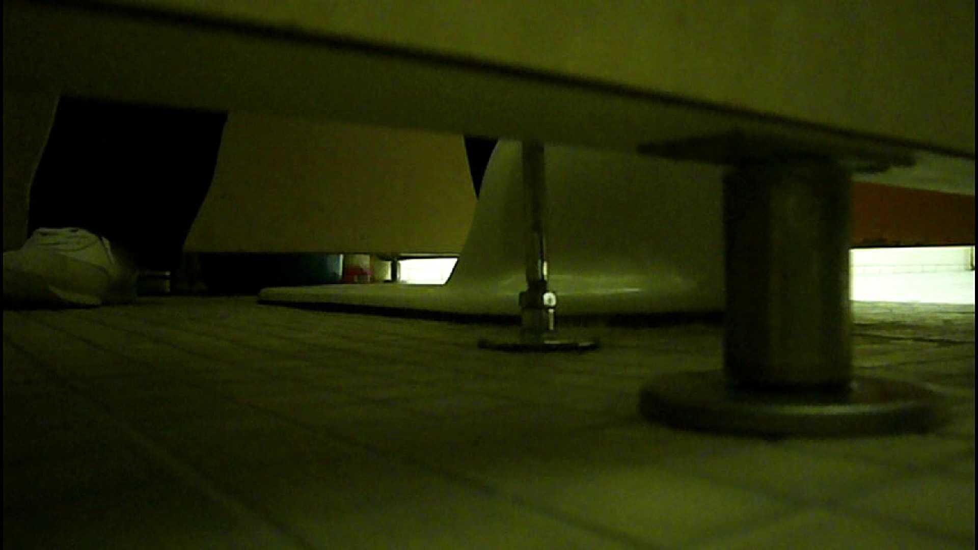 洗面所固定カメラ撮影 オムニバスNol.2 OLの実態 | 洗面所  94pic 51