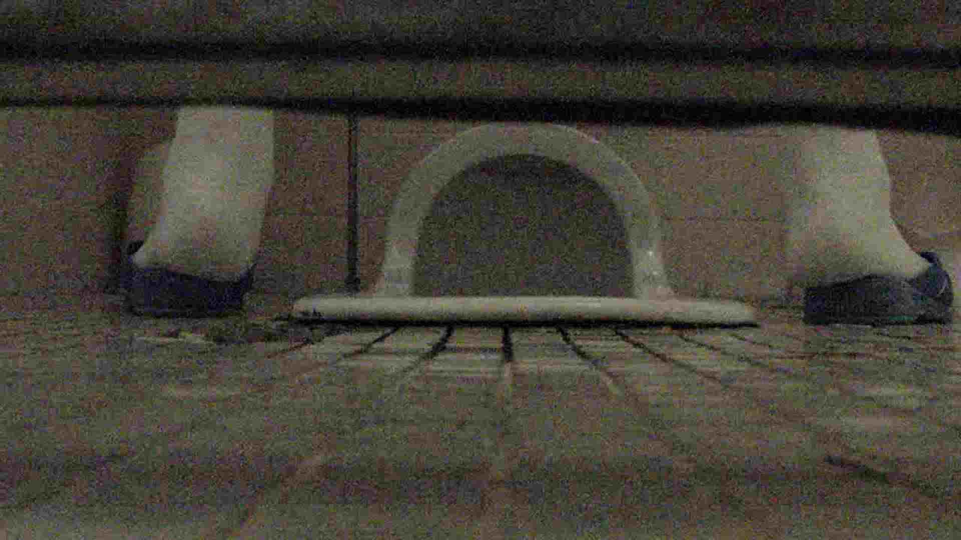 洗面所固定カメラ撮影 オムニバスNol.2 OLの実態  94pic 58