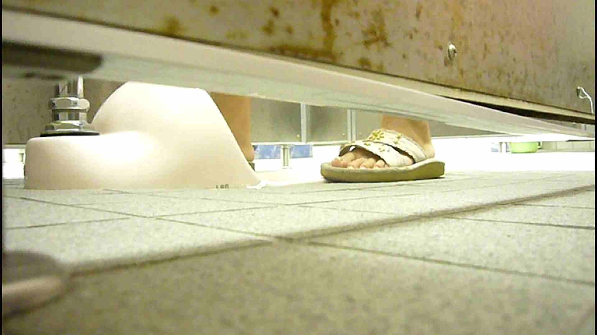 洗面所固定カメラ撮影 オムニバスNol.2 OLの実態  94pic 62