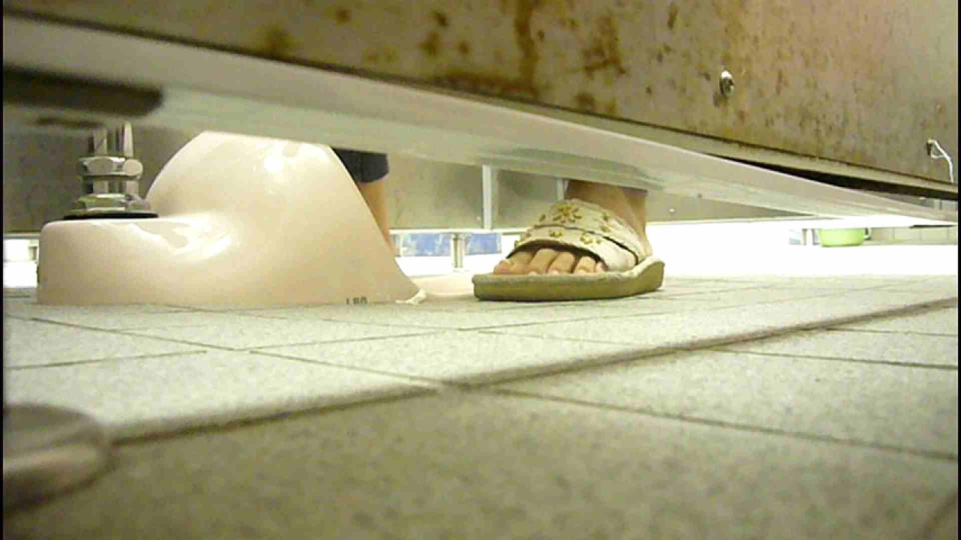洗面所固定カメラ撮影 オムニバスNol.2 OLの実態  94pic 64