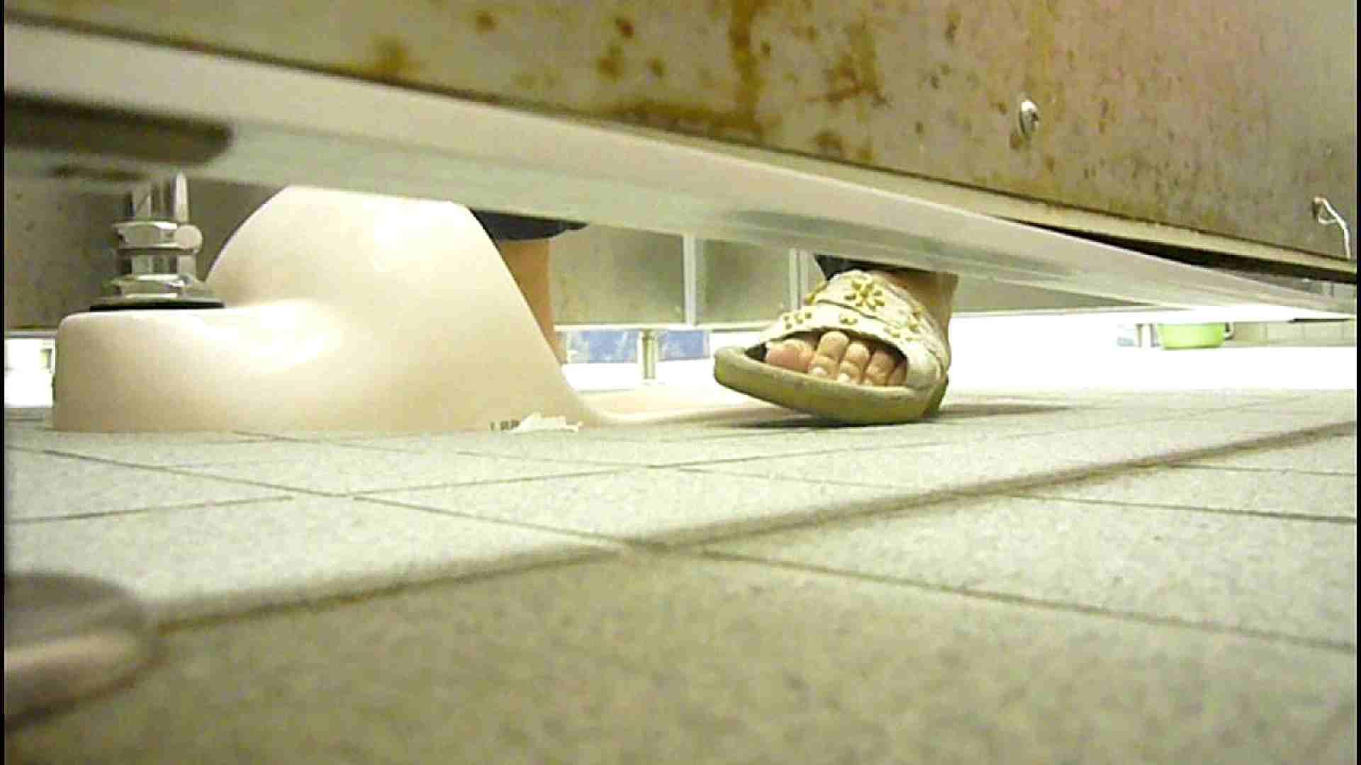 洗面所固定カメラ撮影 オムニバスNol.2 OLの実態  94pic 76