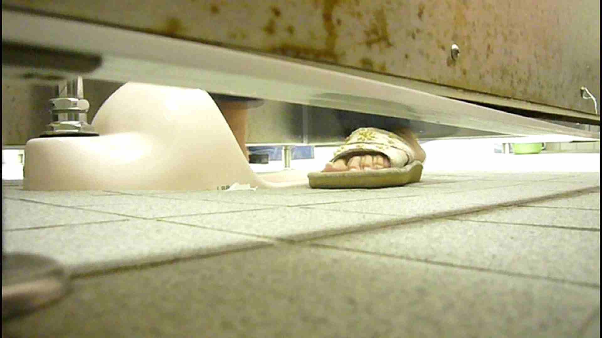 洗面所固定カメラ撮影 オムニバスNol.2 OLの実態 | 洗面所  94pic 81
