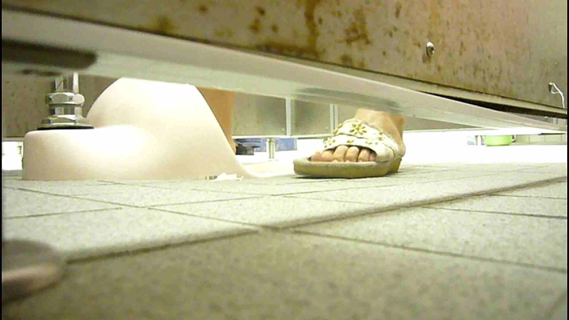 洗面所固定カメラ撮影 オムニバスNol.2 OLの実態  94pic 82