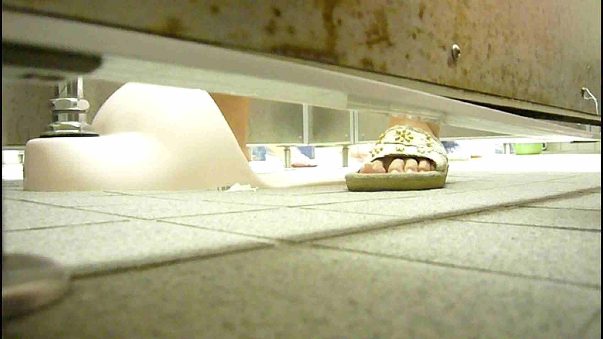 洗面所固定カメラ撮影 オムニバスNol.2 OLの実態 | 洗面所  94pic 85