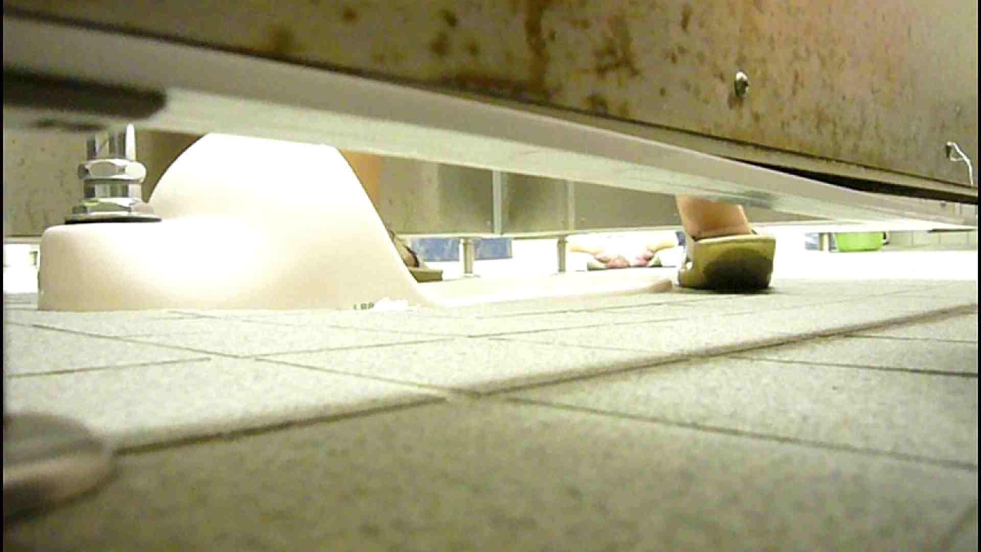 洗面所固定カメラ撮影 オムニバスNol.2 OLの実態  94pic 88
