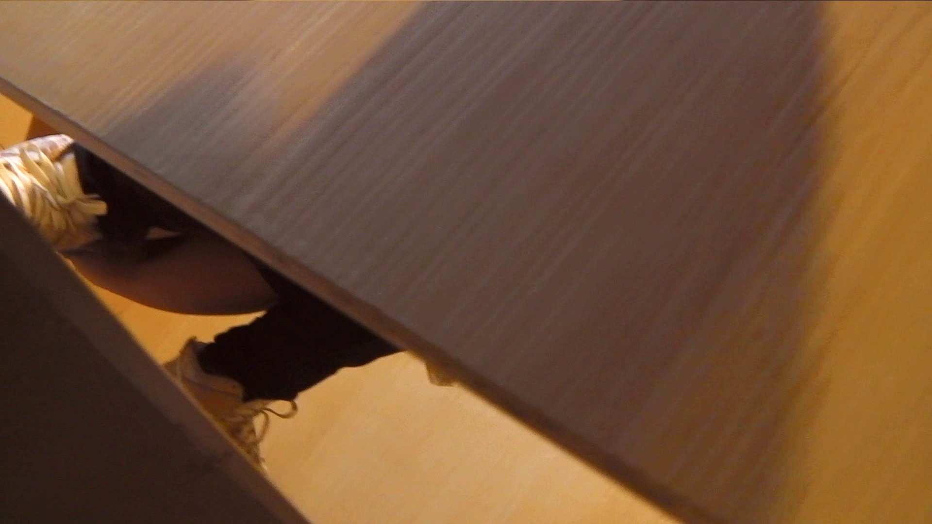 阿国ちゃんの「和式洋式七変化」No.3 洗面所  29pic 14