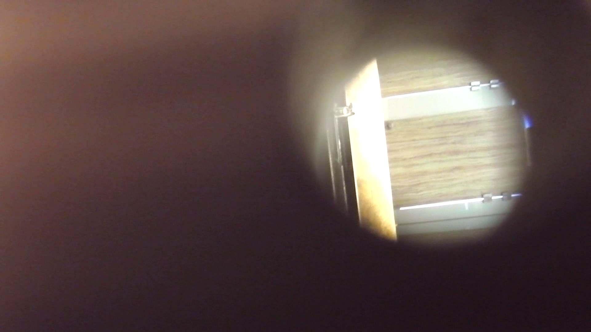 阿国ちゃんの「和式洋式七変化」No.3 洗面所 | 和式  29pic 17