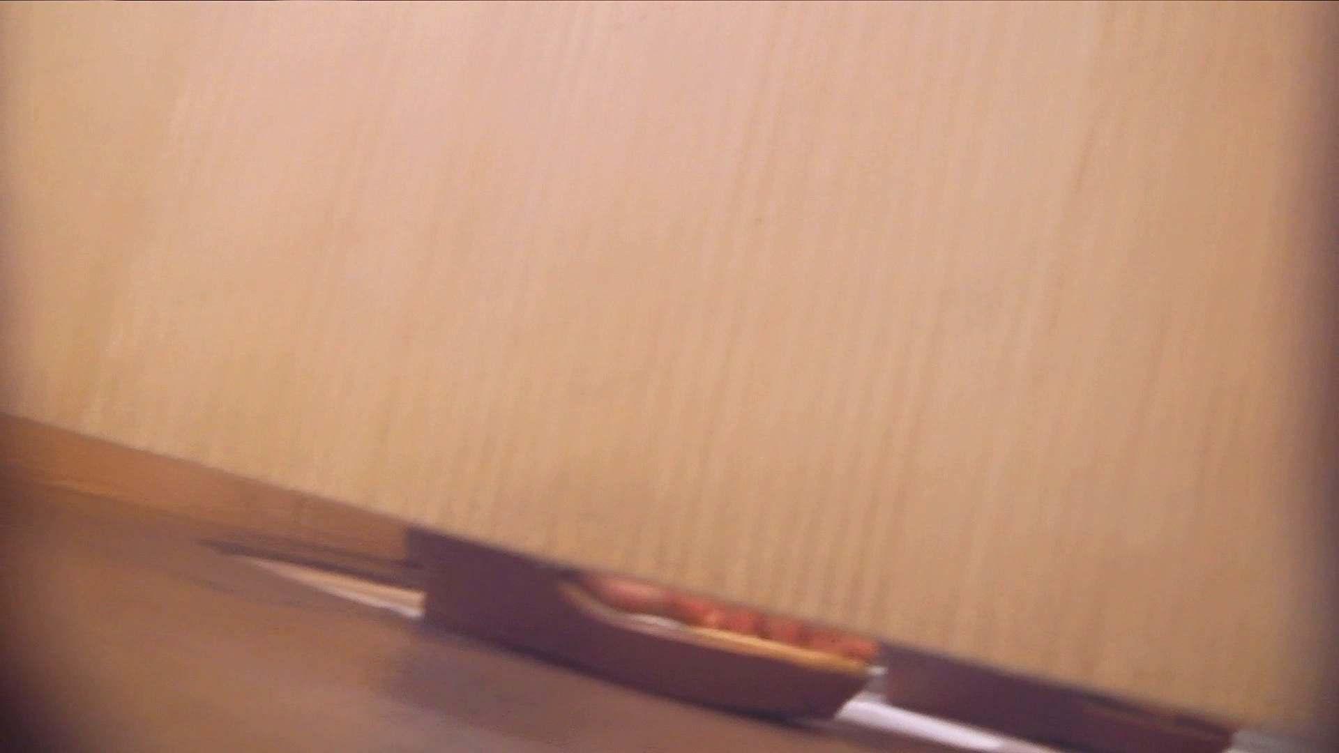 阿国ちゃんの「和式洋式七変化」No.4 洗面所  97pic 62