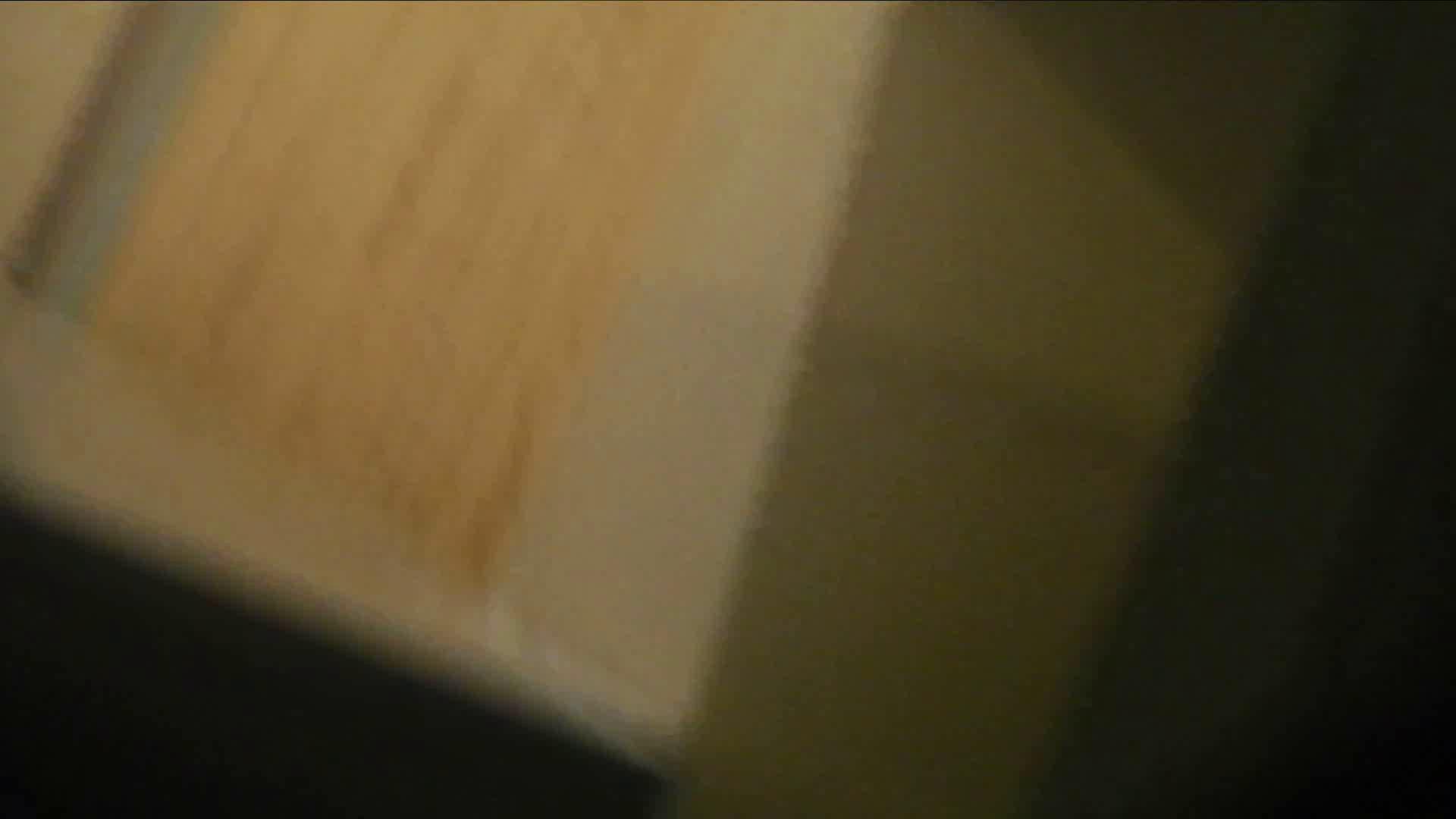 阿国ちゃんの「和式洋式七変化」No.15 洗面所 | 和式  90pic 31