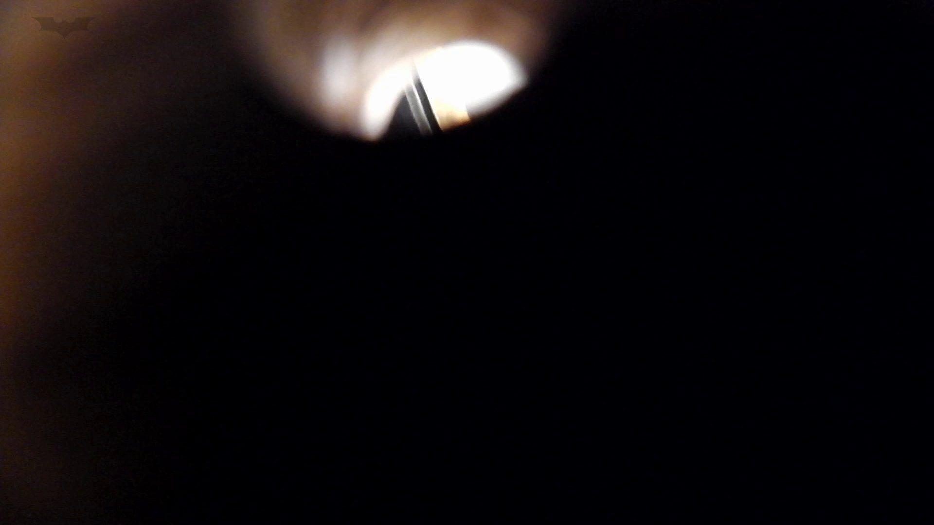 和式洋式七変化 Vol.29半年ぶりの再会!ここしか見れない中腰特別アンクル。 洗面所 のぞき濡れ場動画紹介 59pic 8