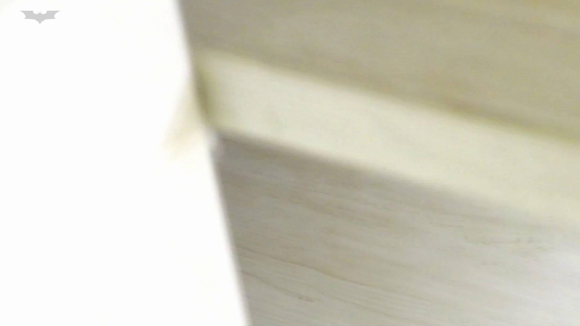 和式洋式七変化 Vol.31 洋式だけど丸見えですっ!! 洗面所 | OLの実態  53pic 13