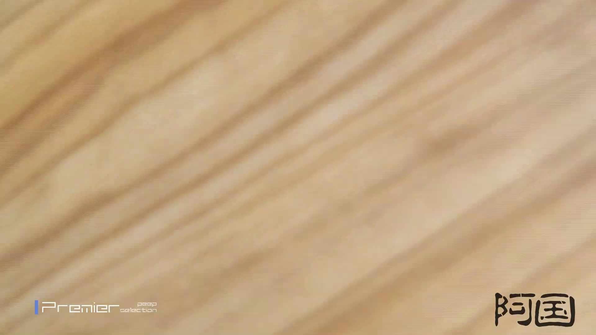 和式洋式七変化 Vol.34 最終作、 シリーズ最高の美人登場 洗面所  91pic 40