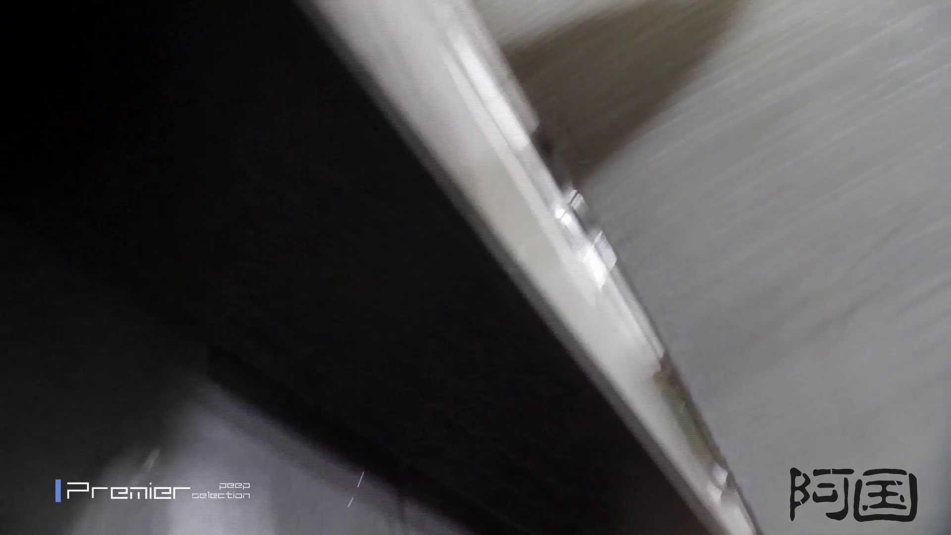 和式洋式七変化 Vol.34 最終作、 シリーズ最高の美人登場 OLの実態 盗み撮りオマンコ動画キャプチャ 91pic 66