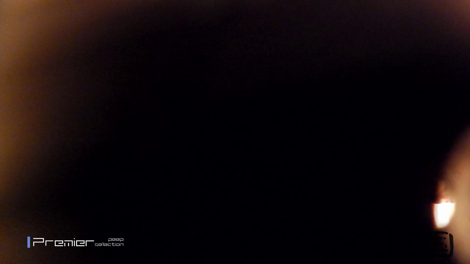 和式洋式七変化 Vol.34 最終作、 シリーズ最高の美人登場 洗面所  91pic 76