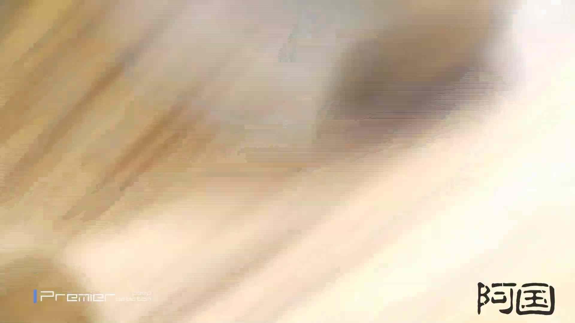 和式洋式七変化 Vol.34 最終作、 シリーズ最高の美人登場 和式 SEX無修正画像 91pic 83