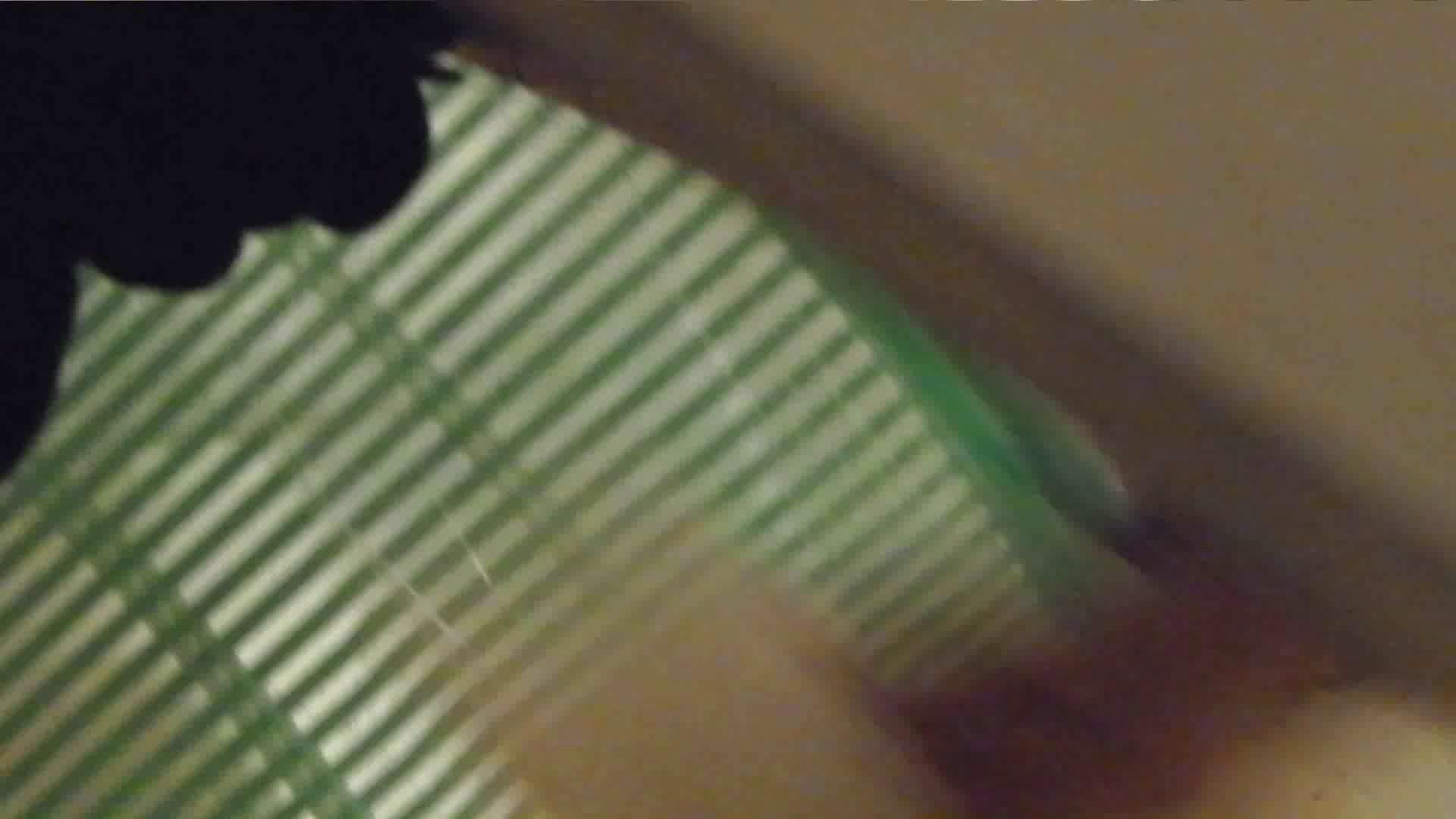 世界の射窓から Nol.22 OLの実態  56pic 32