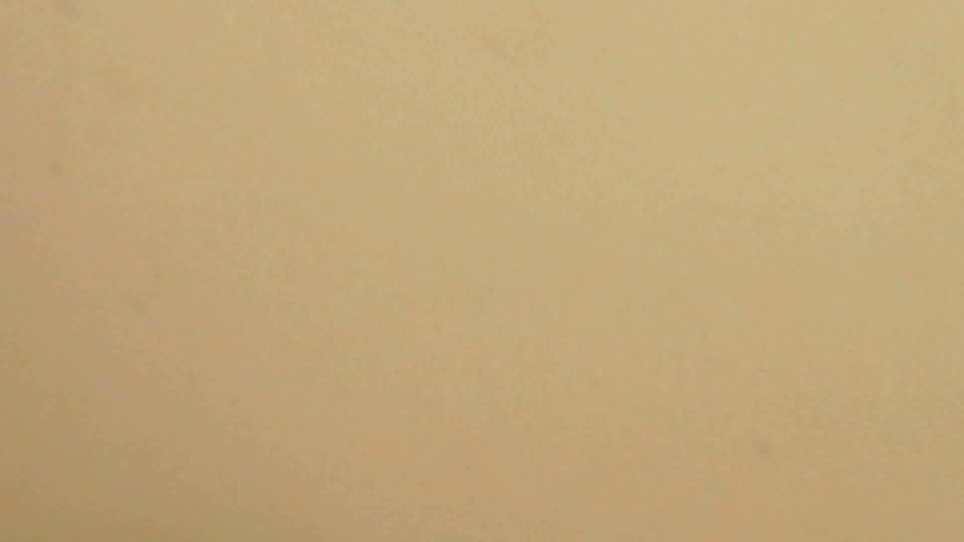 世界の射窓から vol.28 洗面所   OLの実態  96pic 85