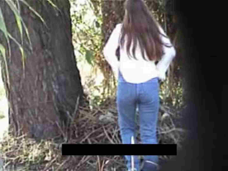 巨乳 乳首:白人さんの野外排泄盗撮vol.1:のぞき本舗 中村屋