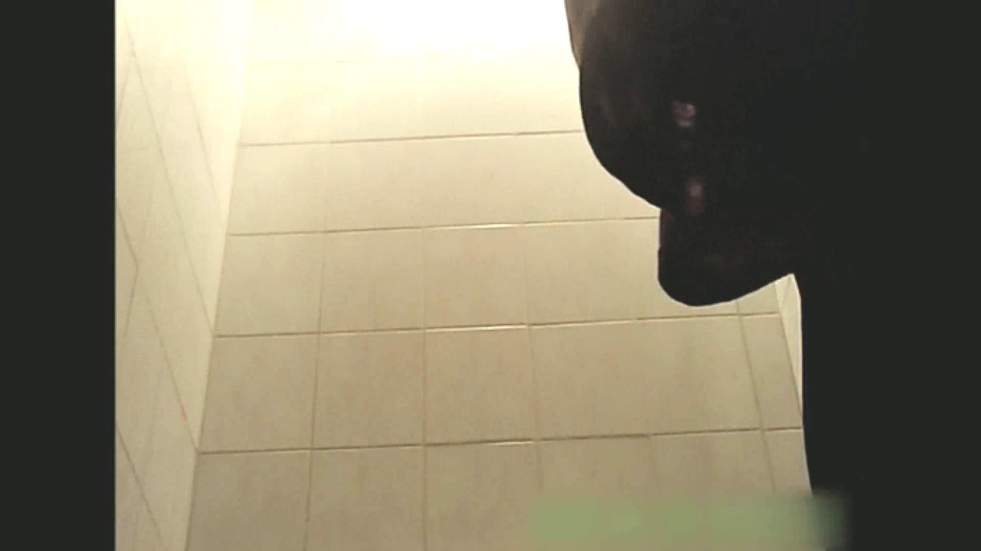 実録!!綺麗なお姉さんのトイレ事情・・・。vol.13 トイレ  62pic 48