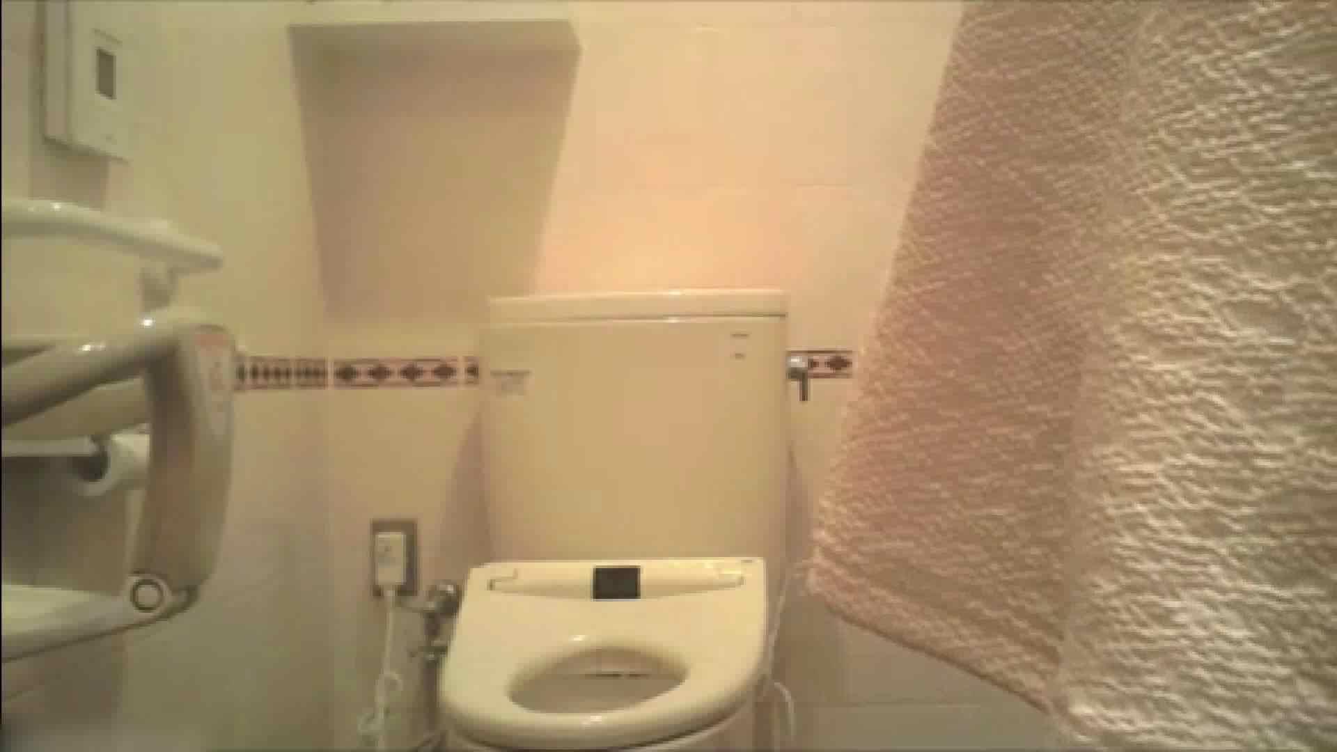 実録!!綺麗なお姉さんのトイレ事情・・・。vol.18 OLの実態  70pic 48