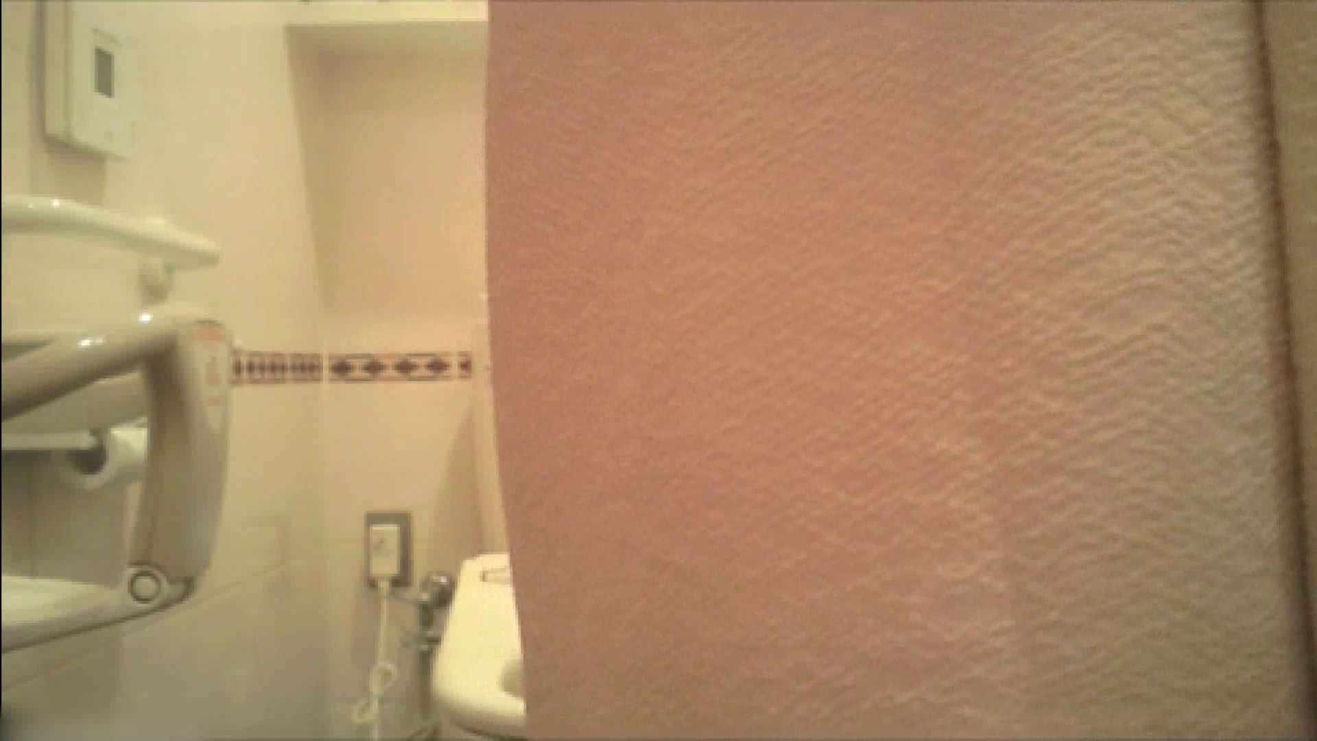 実録!!綺麗なお姉さんのトイレ事情・・・。vol.18 OLの実態  70pic 54