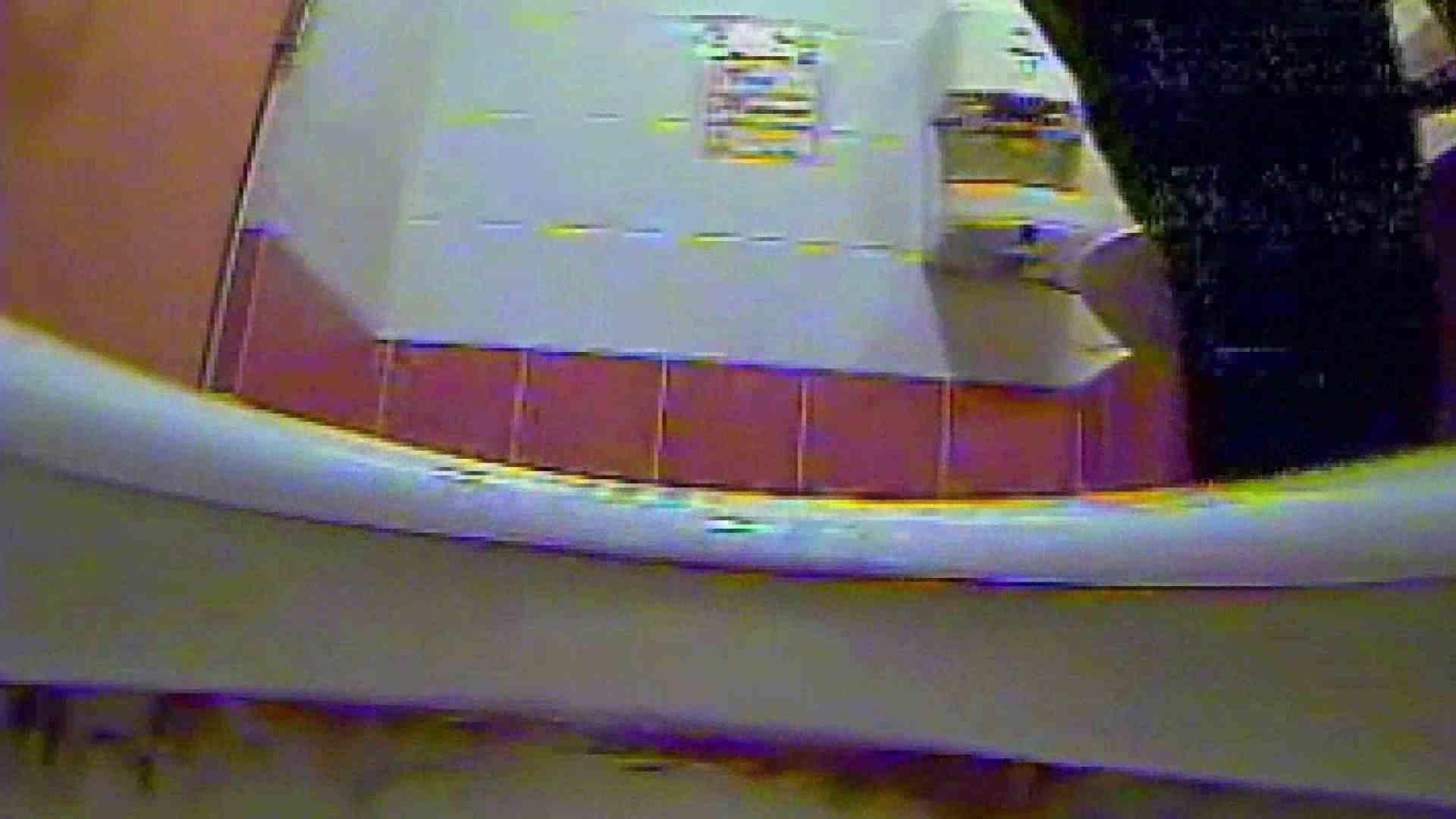 巨乳 乳首:キレカワ女子大生の秘密の洗面所!Vol.011:ピープフォックス(盗撮狐)