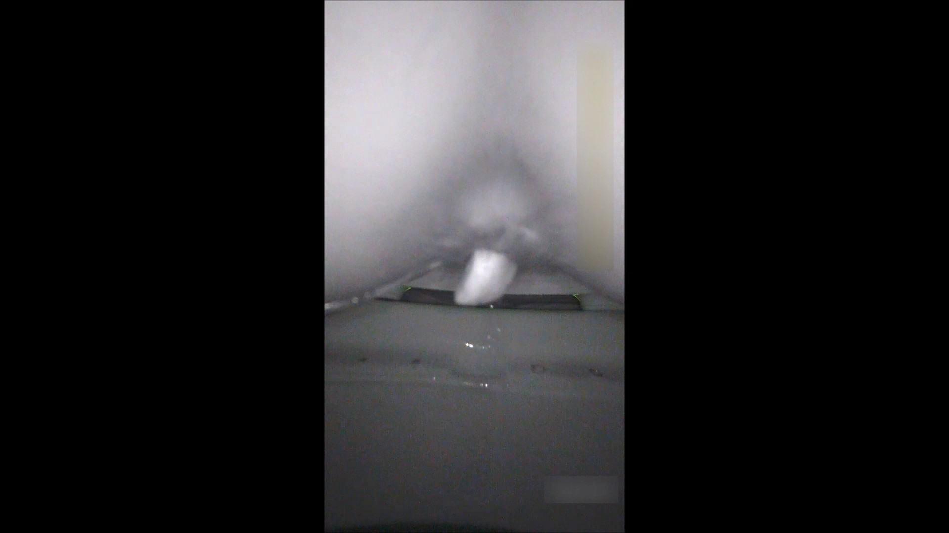 キレカワ女子大生の秘密の洗面所!Vol.052 洗面所 盗み撮りオマンコ動画キャプチャ 52pic 20