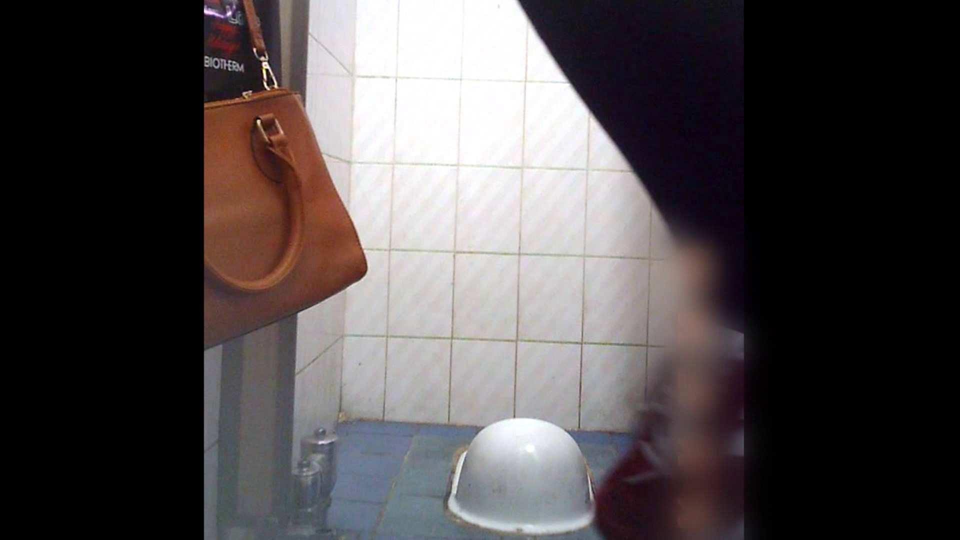 潜入!!韓国秘密のトイレ!Vol.12 トイレ 隠し撮りオマンコ動画紹介 100pic 14