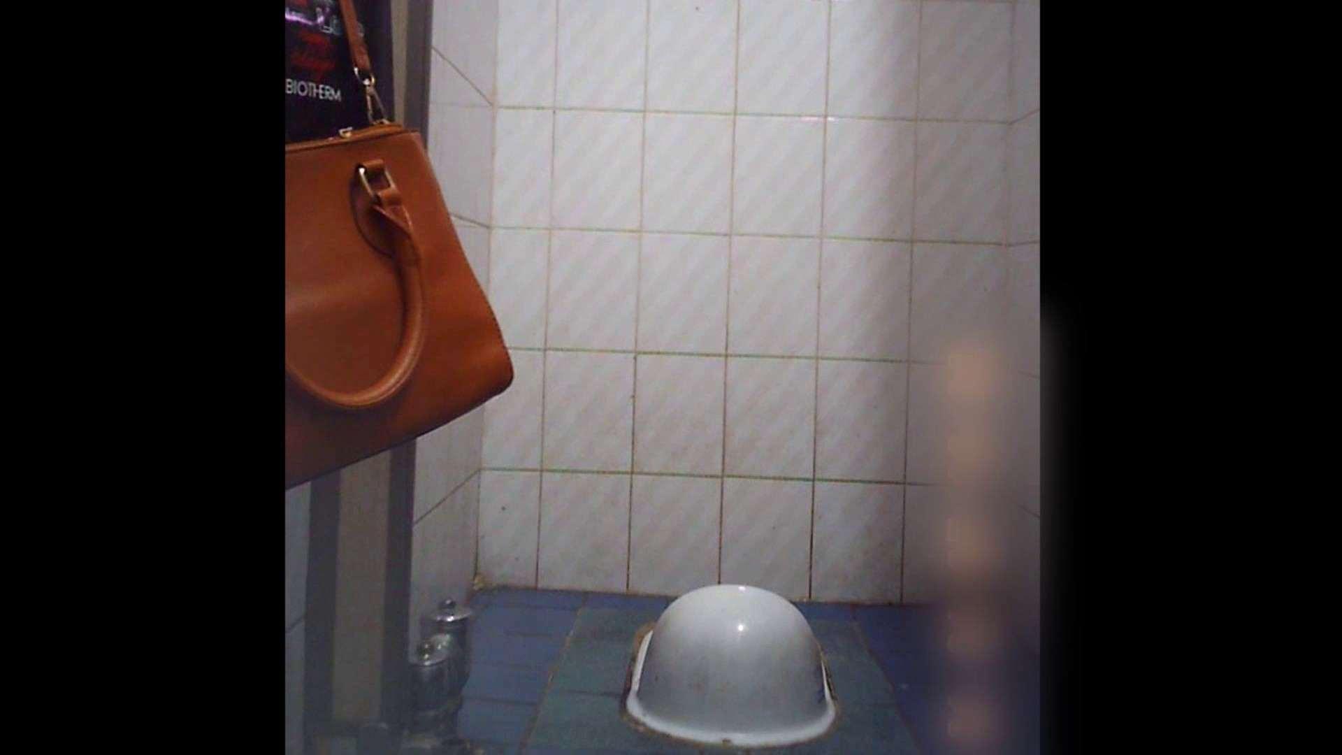 潜入!!韓国秘密のトイレ!Vol.12 トイレ 隠し撮りオマンコ動画紹介 100pic 24