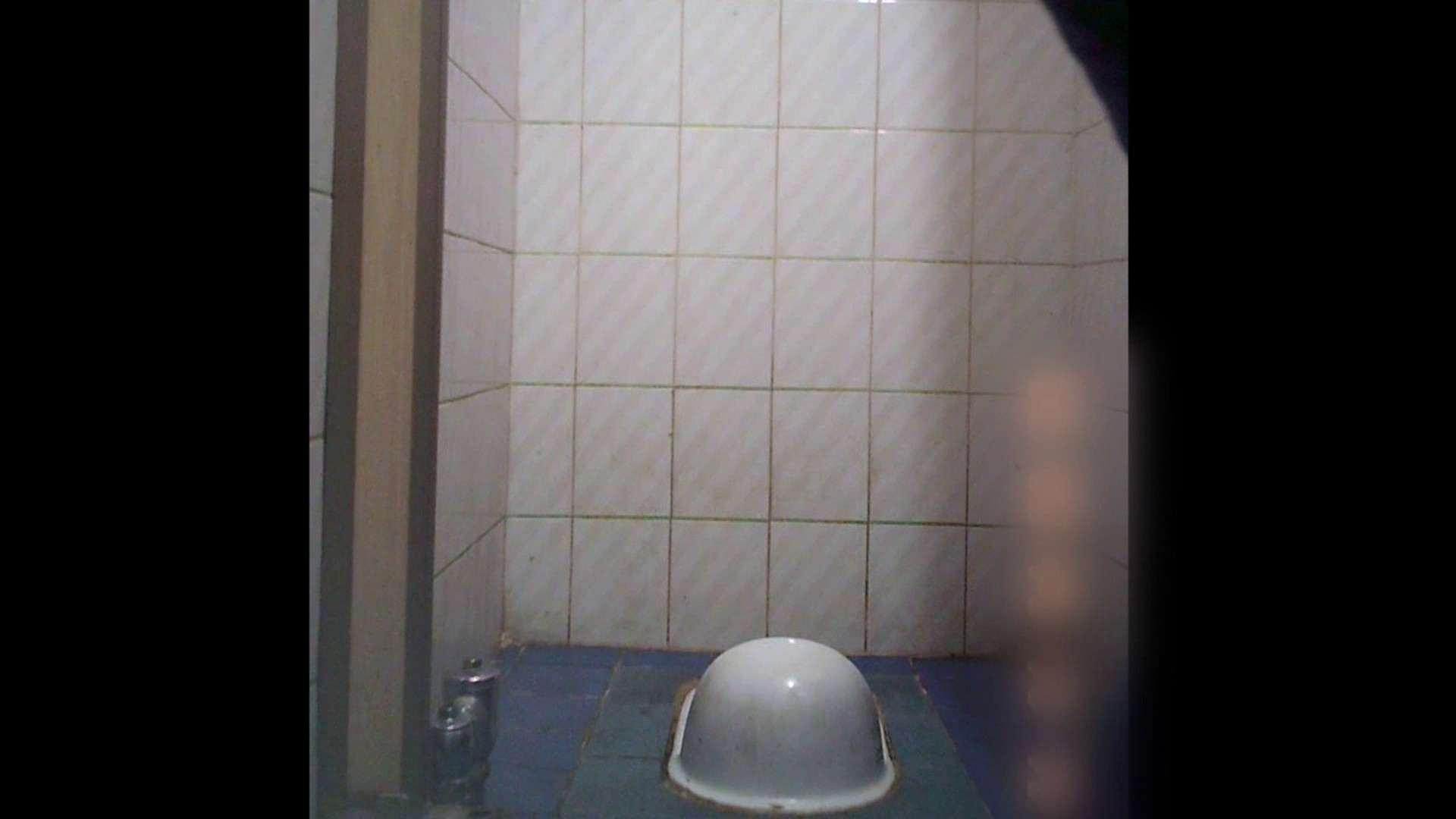 潜入!!韓国秘密のトイレ!Vol.12 潜入 隠し撮りセックス画像 100pic 98
