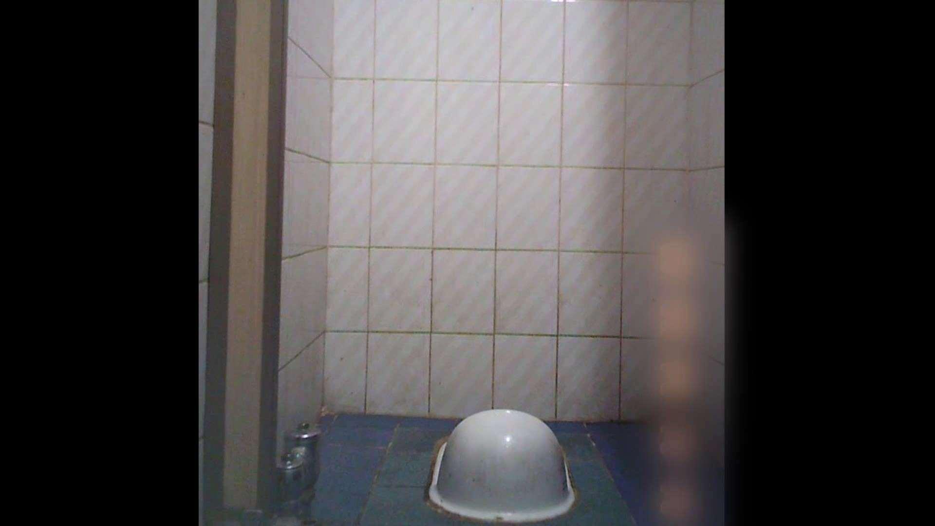 潜入!!韓国秘密のトイレ!Vol.12 トイレ 隠し撮りオマンコ動画紹介 100pic 99