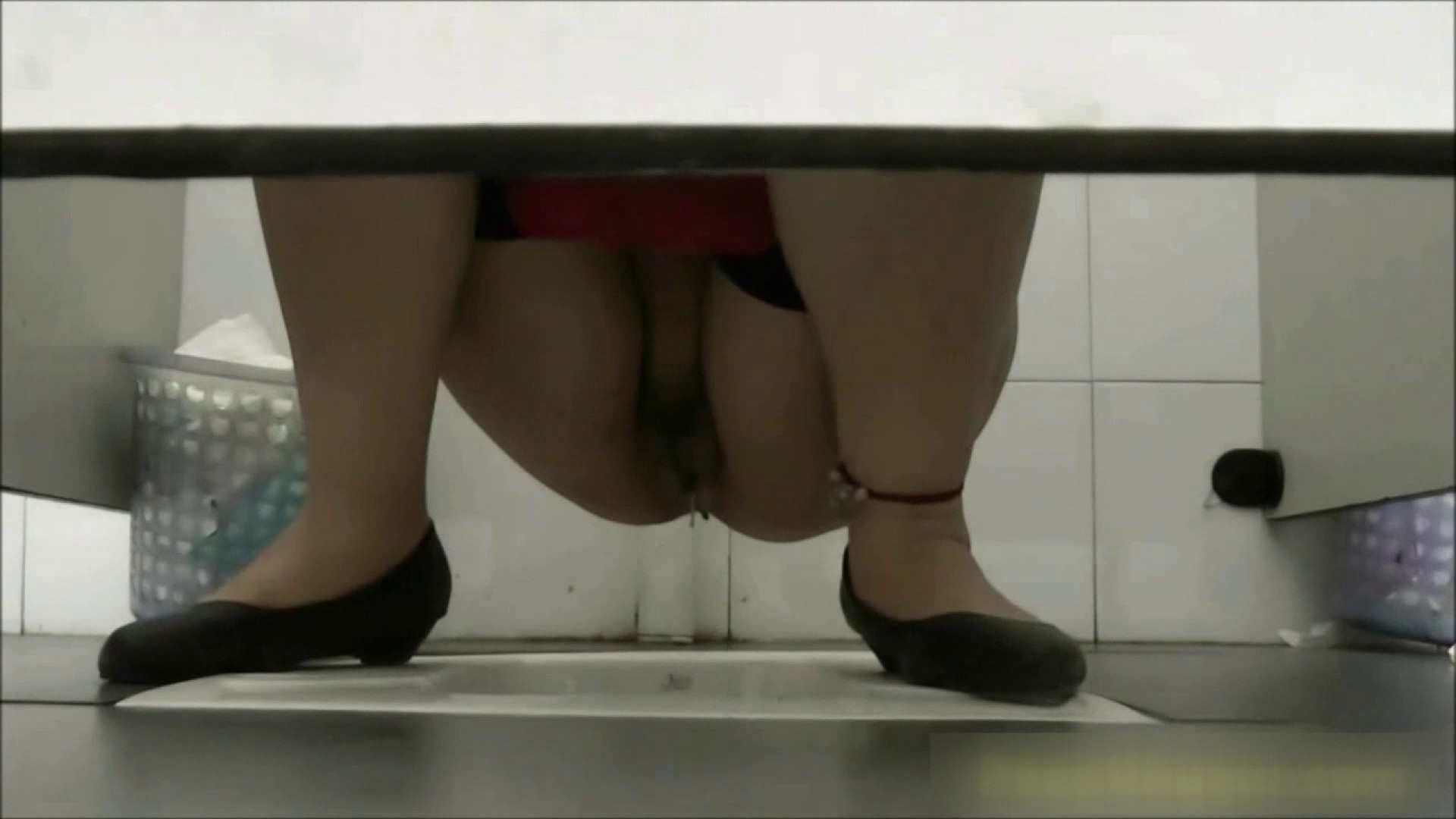 洗面所盗撮~隣の美人お姉さんVol.29 美人 性交動画流出 36pic 26