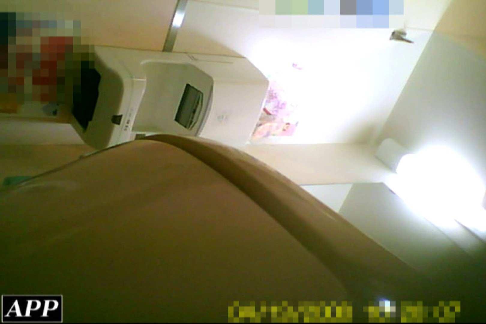 巨乳 乳首:3視点洗面所 vol.045:ピープフォックス(盗撮狐)