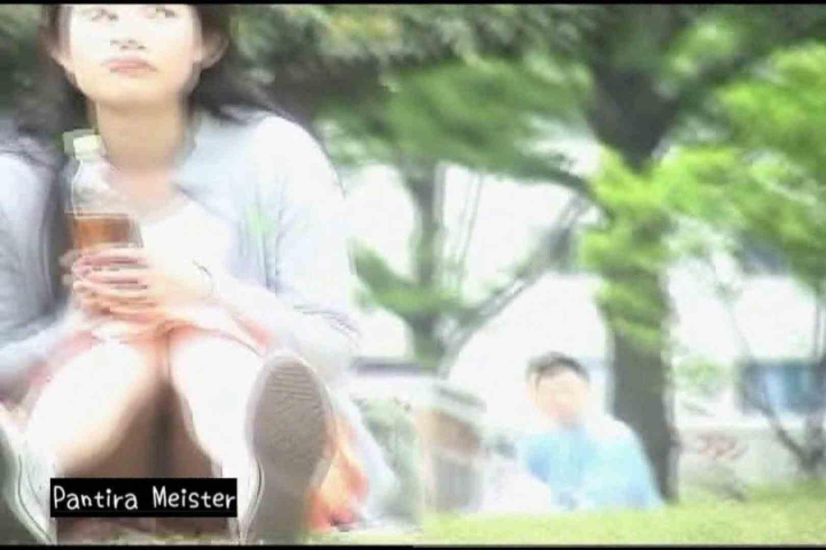 巨乳 乳首:オリジナルパンチラ No.105:ピープフォックス(盗撮狐)