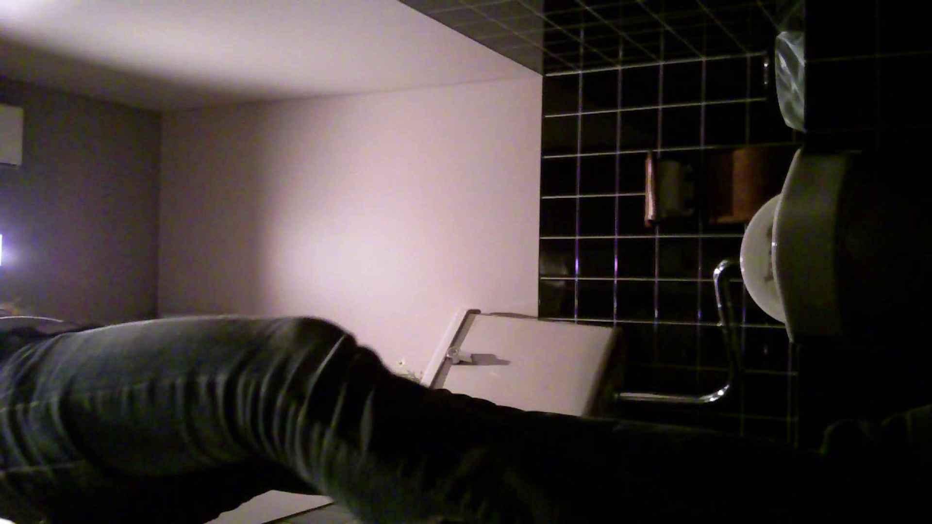 美女の集まる飲み屋洗面所 vol.01 パンツ大放出 覗き性交動画流出 73pic 11
