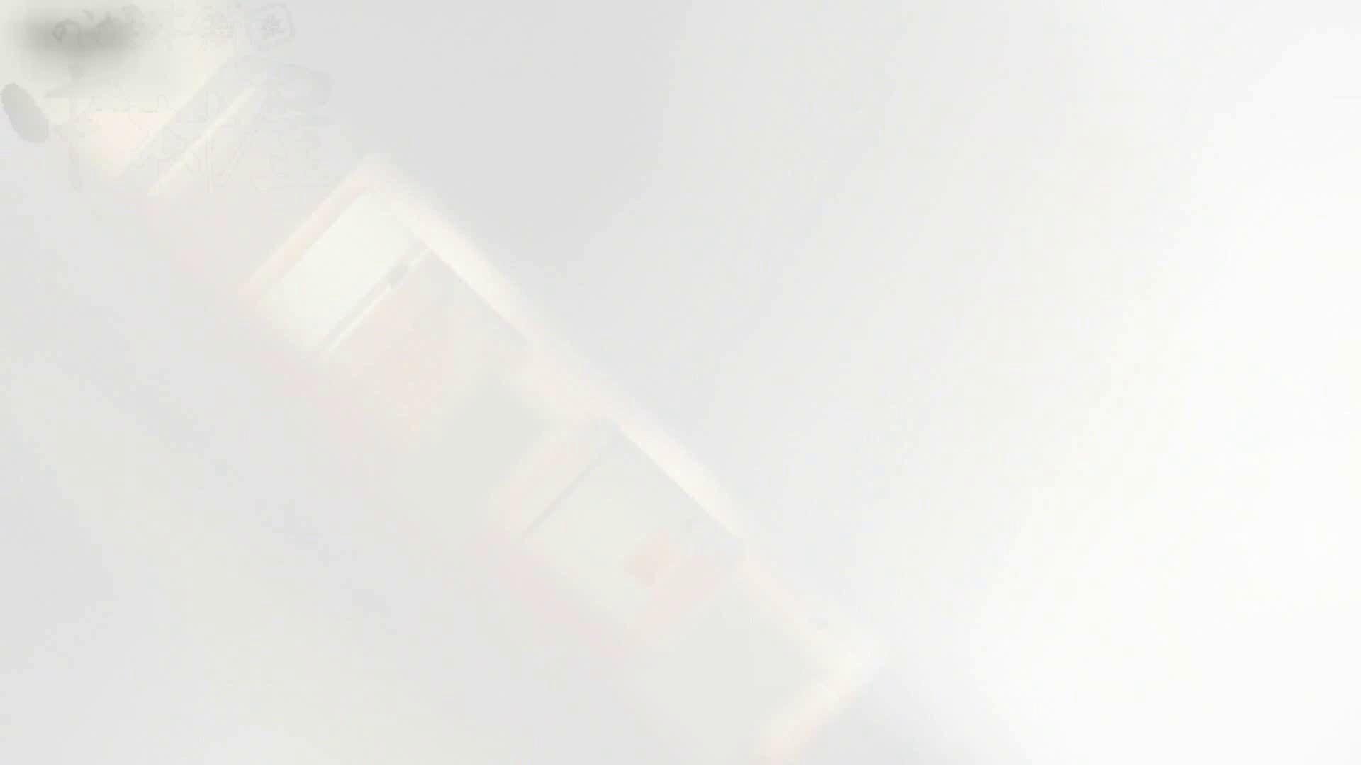 巨乳 乳首:マンコ丸見え!第三体育館潜入撮File004:ピープフォックス(盗撮狐)