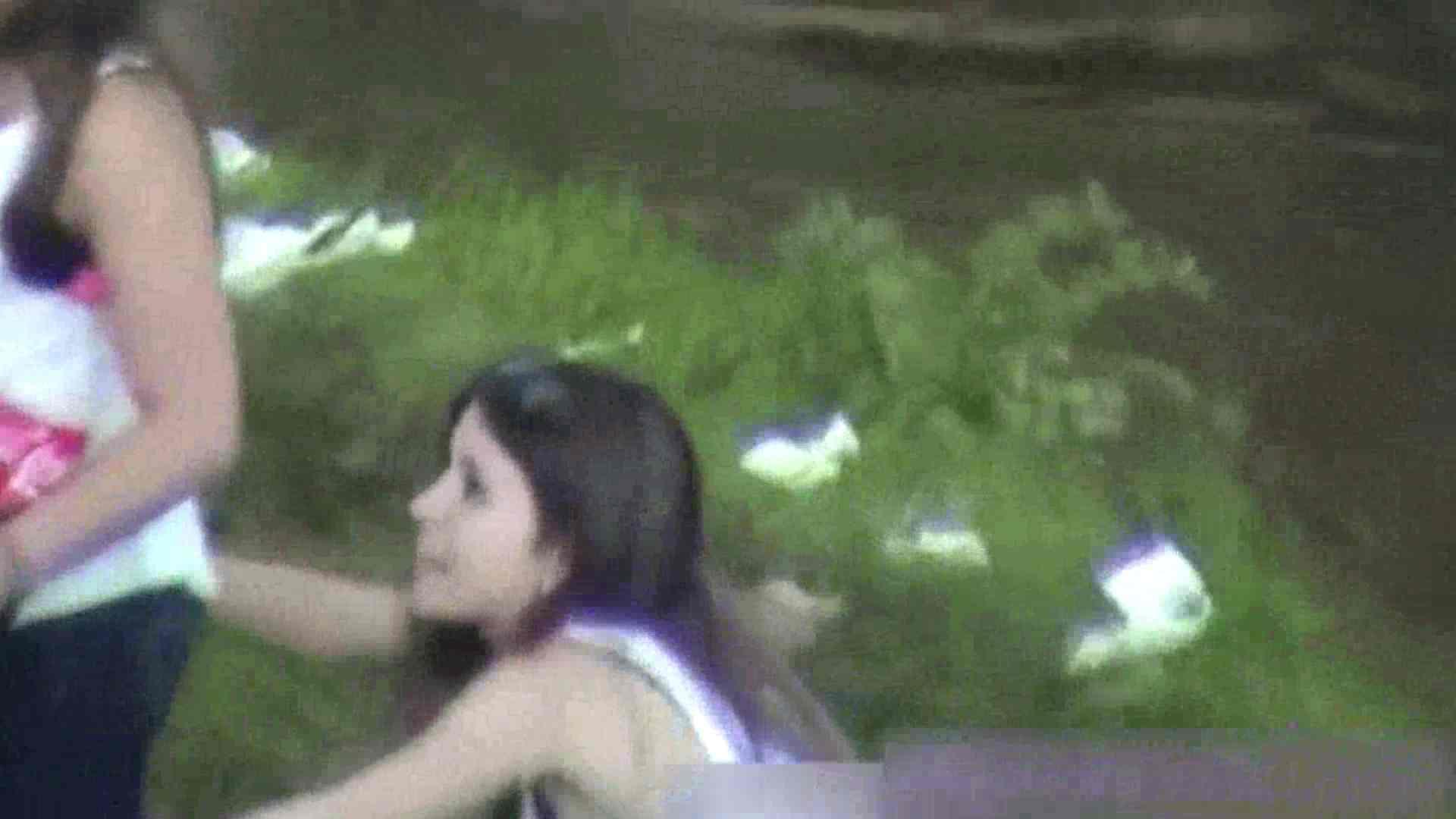 森の妖精 外人さんの聖なる水Vol.01 ギャルの実態  74pic 3
